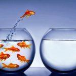 La importancia del subconsciente en los procesos de cambio