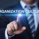 Cultura empresarial: concepto, tipos y componentes