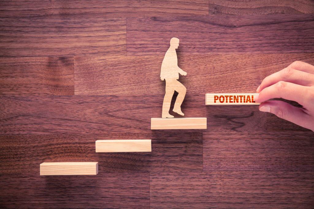 Crear procesos para el desarrollo de talento
